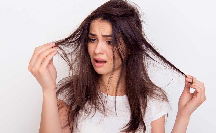 علاج نفشة الشعر في المنزل