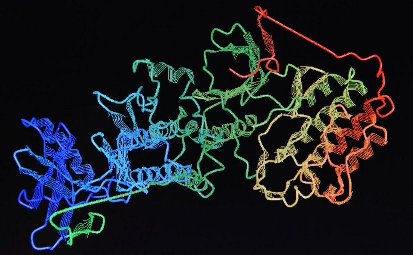 وحدة بناء البروتين هي