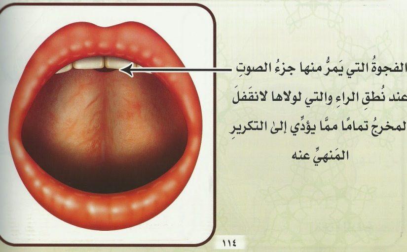 علاج لدغة الراء