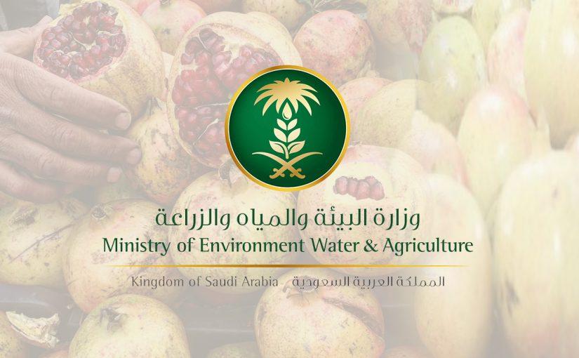 حجز موعد وزارة الزراعة السعودية الخدمات الإلكترونية