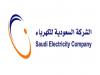 www.se.com.sa تحديث بيانات شركة الكهرباء السعودية بالخطوات