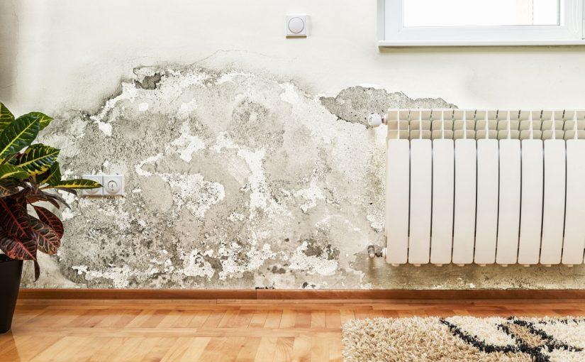 علاج رطوبة الجدران