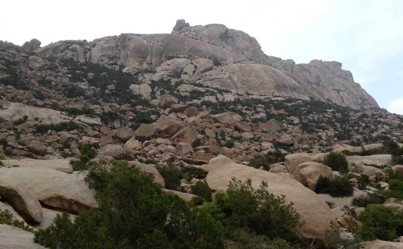 رتب جبال الحجاز بأقسامها الثلاثة من الشمال إلى الجنوب