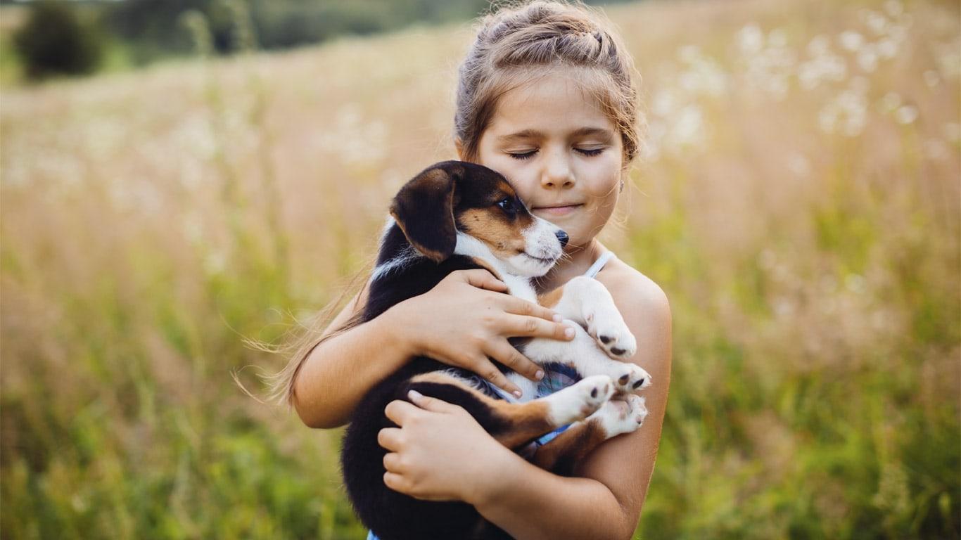 صور الرفق بالحيوانات