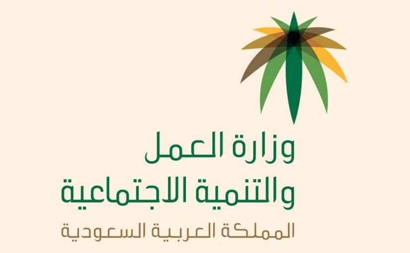 قرارات وزارة العمل الجديدة