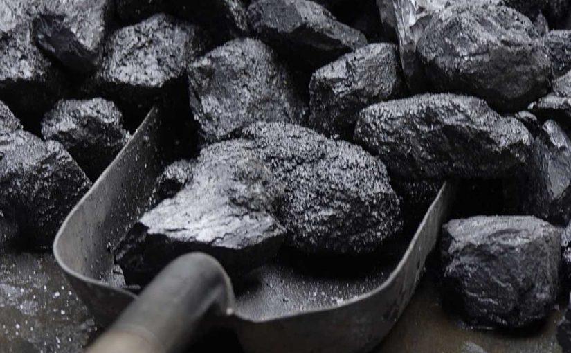 تكون الفحم والوقود الأحفوري يدل على