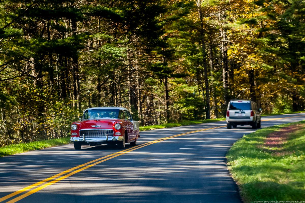 قوة الجذب الداخلية والسرعة الثابتة والتسارع أثناء ركوب السيارة