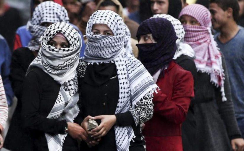 سر إنجاب الفلسطينيات للذكور