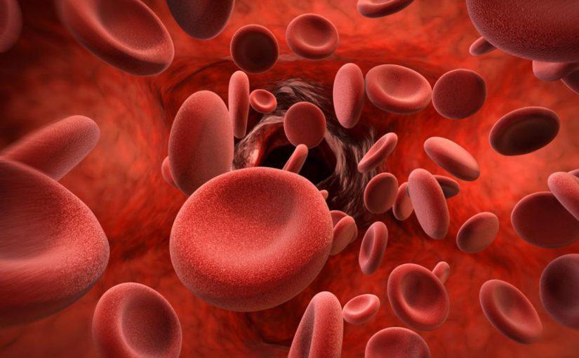 علامات زهرية الدم