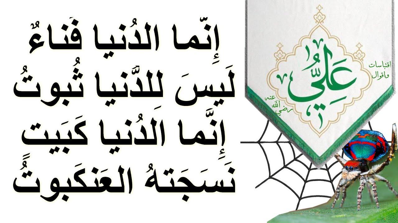 أقوال الإمام علي في الزهد