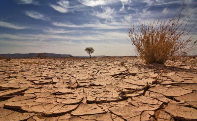اسباب التصحر وتدهور الأراضي الزراعية منها