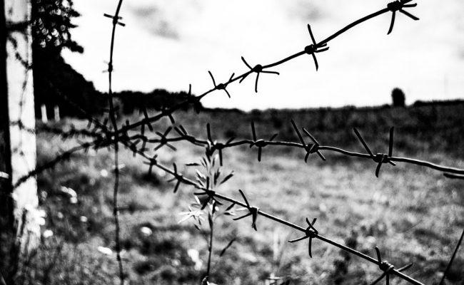 قصة هروب مناضل نفيعات من سجن جلبوع