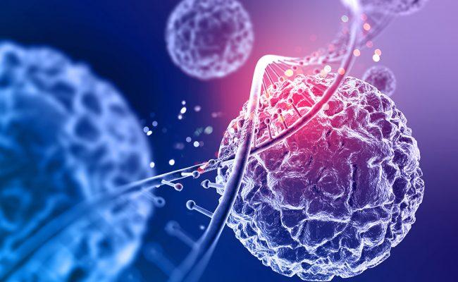يحتوي الجدار الخلوي في البكتيريا على