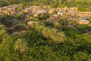 أفضل أماكن سياحية في جزيرة فرسان