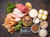 الفرق بين البروتين النباتي والحيواني