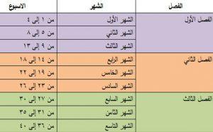 جدول الحمل الاسبوعي