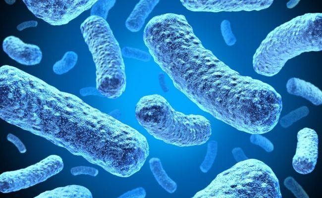 من الامراض التنفسية التي تسببها البكتيريا